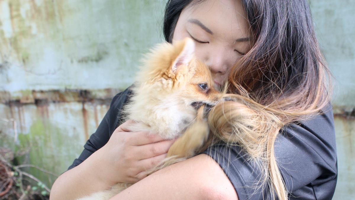 Mijn haar: nog steeds het favoriete speelgoed van de puppy.